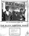 An Introduction to the Black Panthers