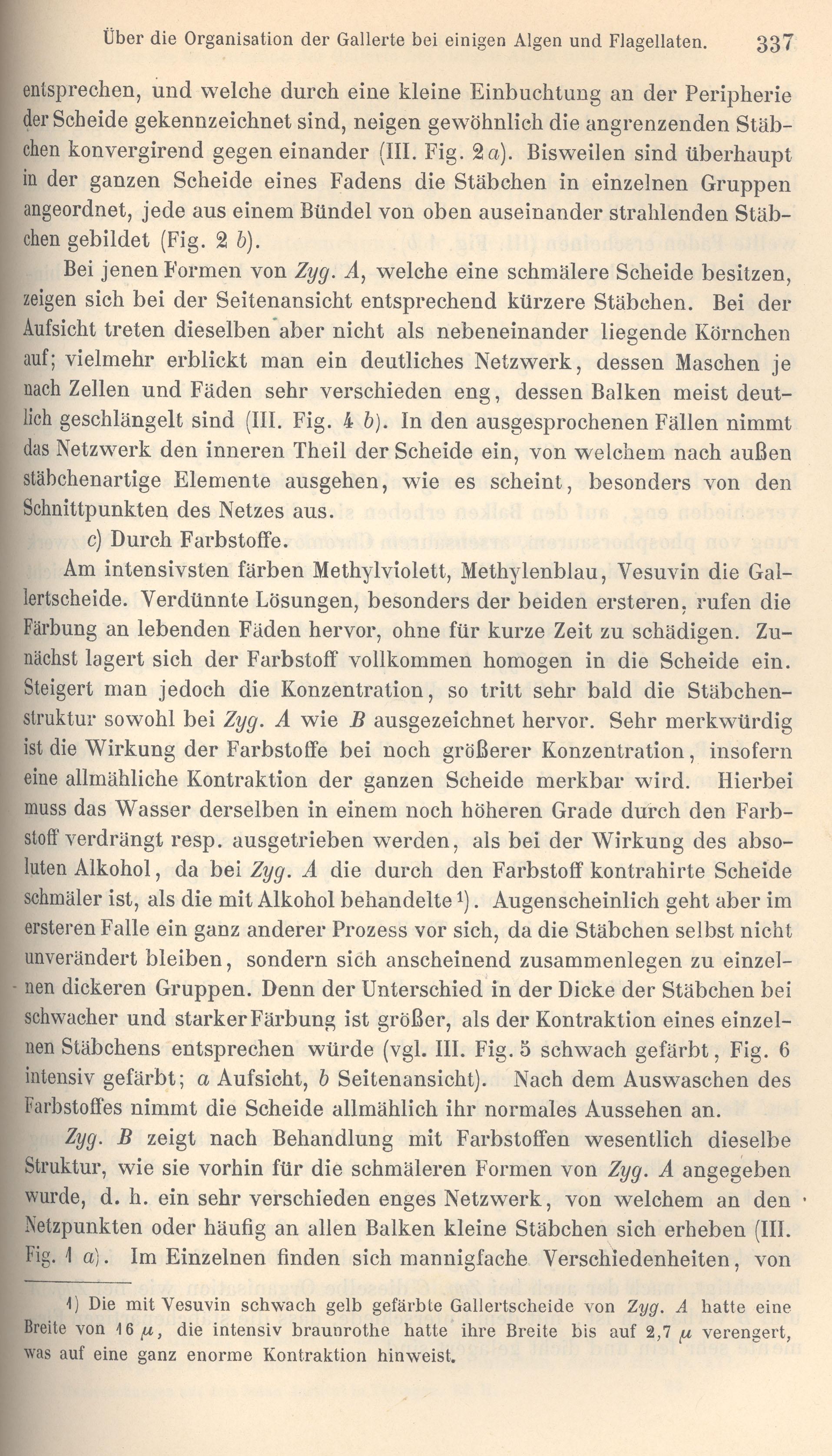 Großartig Membran Kontraktion Zeitgenössisch - Menschliche Anatomie ...