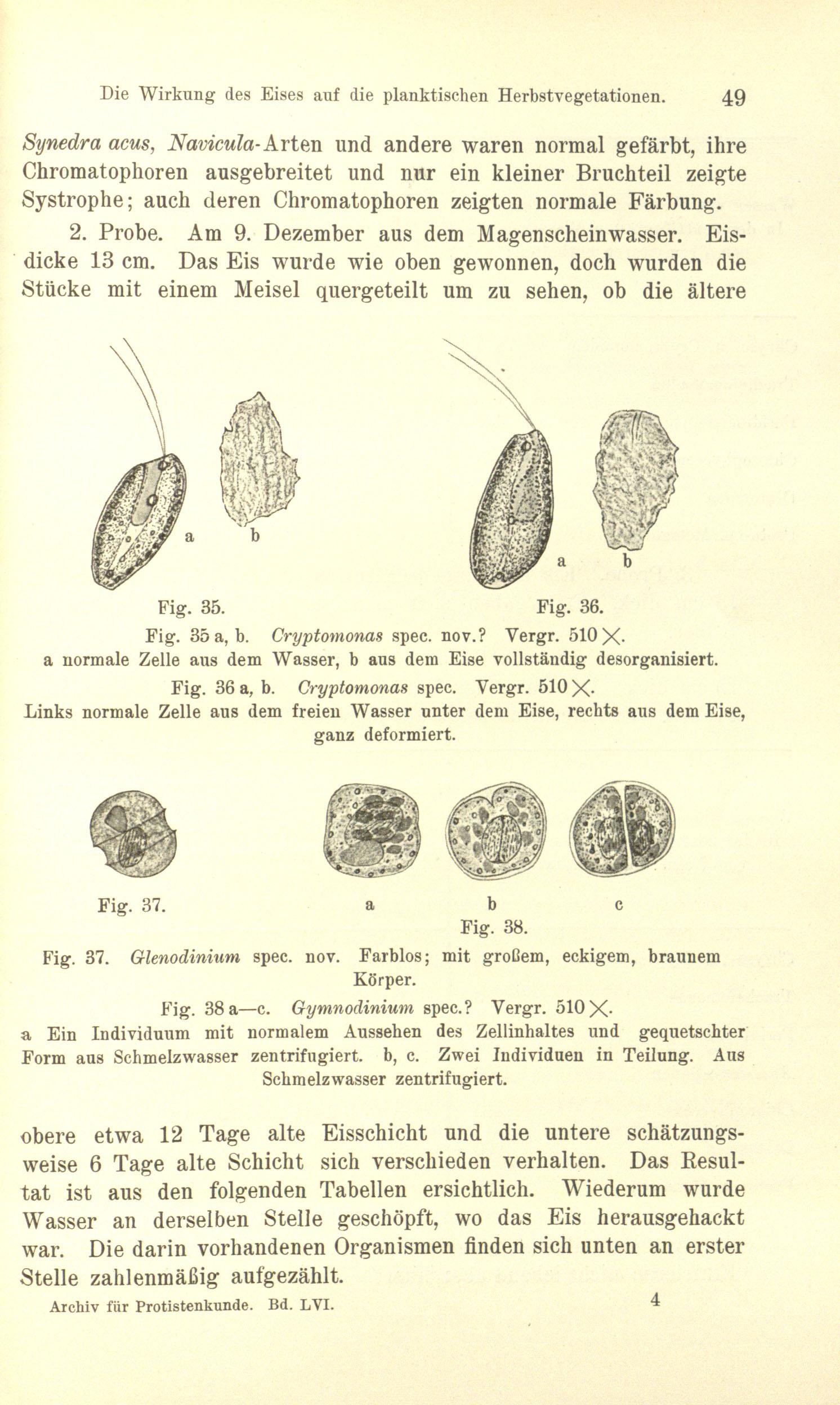 Fein Die Zelle Anatomie Und Teilung Fotos - Menschliche Anatomie ...
