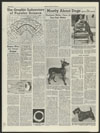 Thumbnail image of Mostly about dogs : a prize-winning toy Manchester terrier