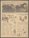 Thumbnail image of Movie of a jockey thrown headlong