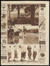 A day at the Chicago golf club