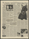 Thumbnail image of Mostly about dogs : this 4 1/2 month old Scottish terrier