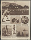 Add heralds of spring