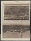Thumbnail image of Chicago - forty years ago and today : 1892