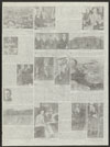 Thumbnail image of Picture for the papers