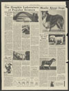 Chicago Tribune : pet column in want ads section