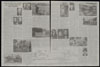 Thumbnail image of Family tree of the Roosevelts