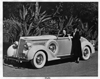1937 Packard convertible coupe with two women next to tropical foliage