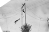 High wire act performed at Lakeside Park, Denver, Colo., at 1909 Glidden Tour