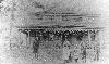 Harrlands in 1900