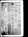 The Owosso Press, 1864-04-16 part 3