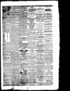 The Owosso Press, 1864-06-11 part 3
