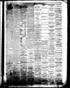 The Owosso Press, 1867-06-19 part 3