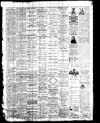 Owosso Weekly Press, 1868-06-17 part 4