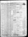 Owosso Weekly Press, 1869-04-07 part 3