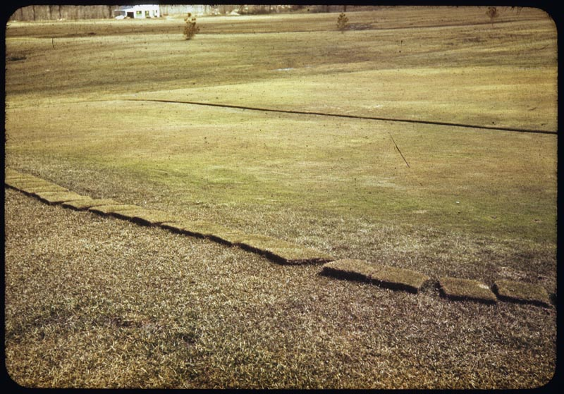 Trenched G to stop winter kill standing water