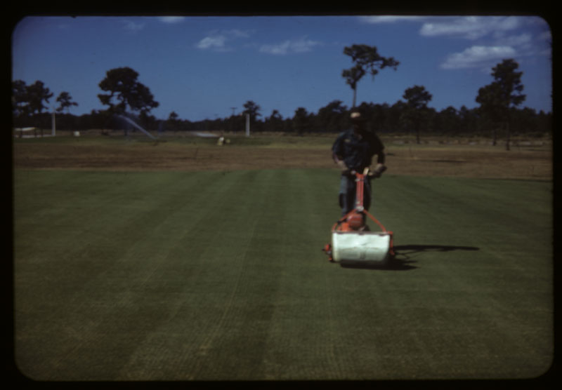 Mowing after thin cutting #8 G