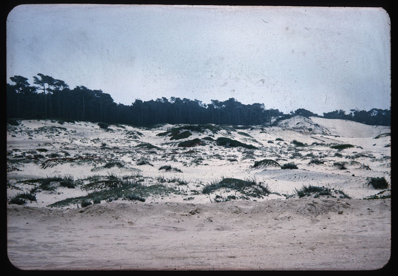 Sands of Monterey, Cal.