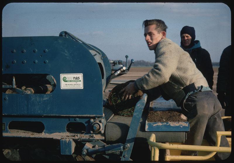 Nunes Sod Harvester