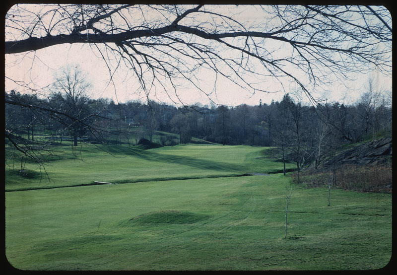 Winter Milorg. Appl. Early Apr. Spr. Greening