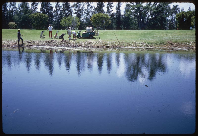 Aquatic Weed Control Hand Removal