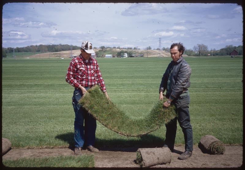 Art & Ken Brockmeier - Sod from rhizomes - No seed