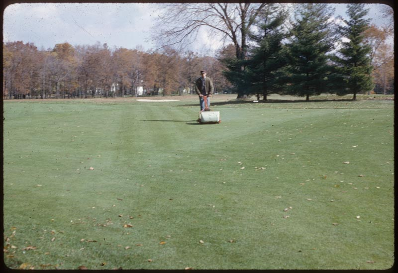 Putting Green Mower used on approaches