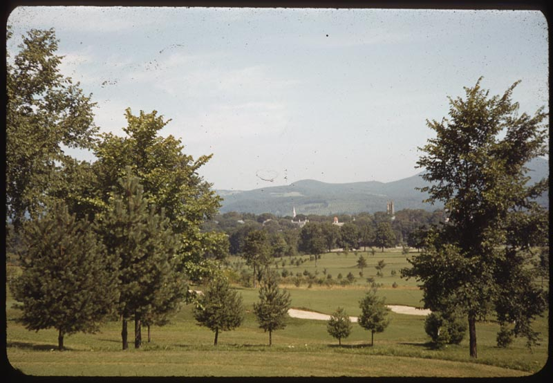 Williamston in Distance
