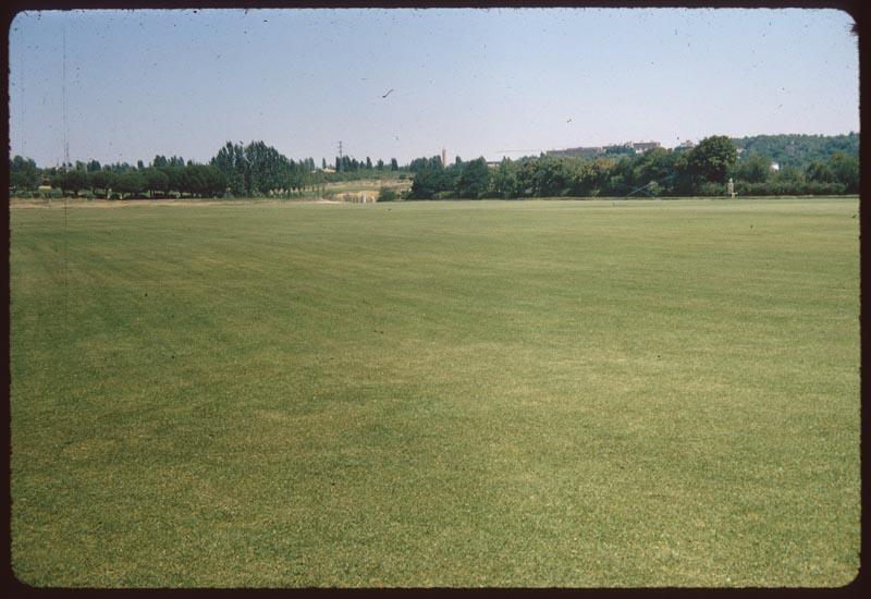 Polo Field Puerto de Hierro