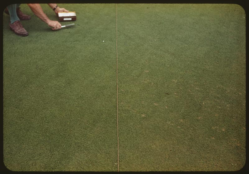Dollarspot eliminated with Milorganite 15#/M in March & June