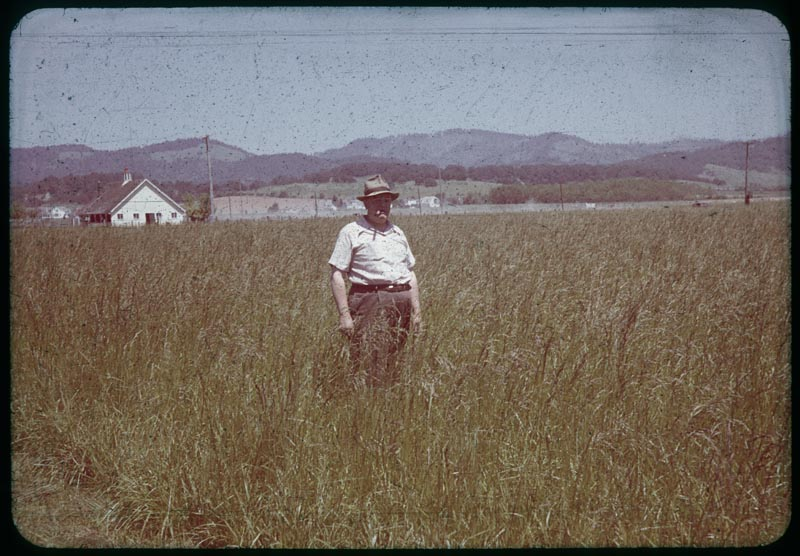 Harry Schoth and his Alta Fescue