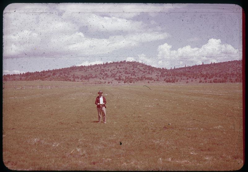 Astoria bent field