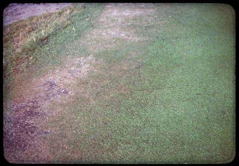 Mower turns wear out rye on G edge