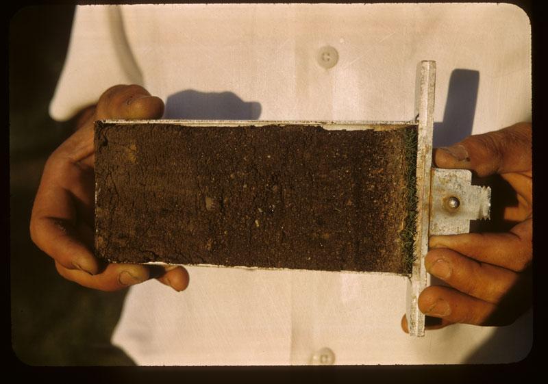 less Footprints in soil profile sand & lower Fert.