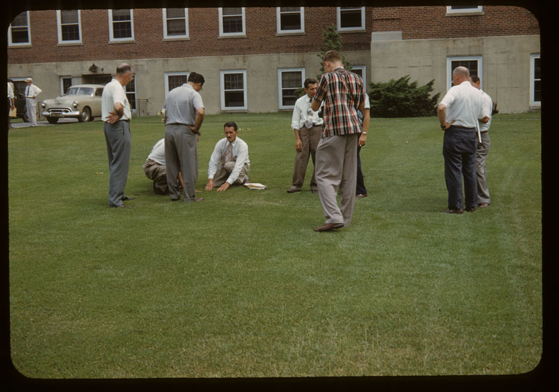 Group on Meyer Zoysia Lawn