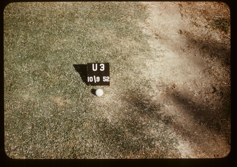 Bare soil next U-3 draws moisture