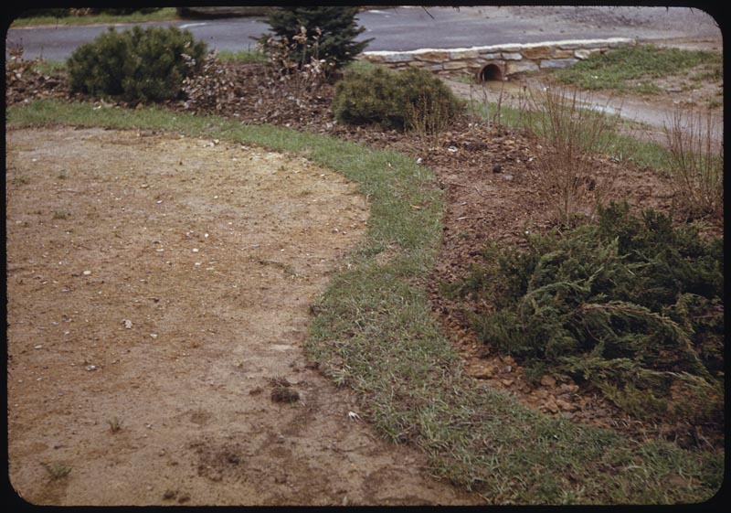 Sodded edge prevents erosion new seeded lawn