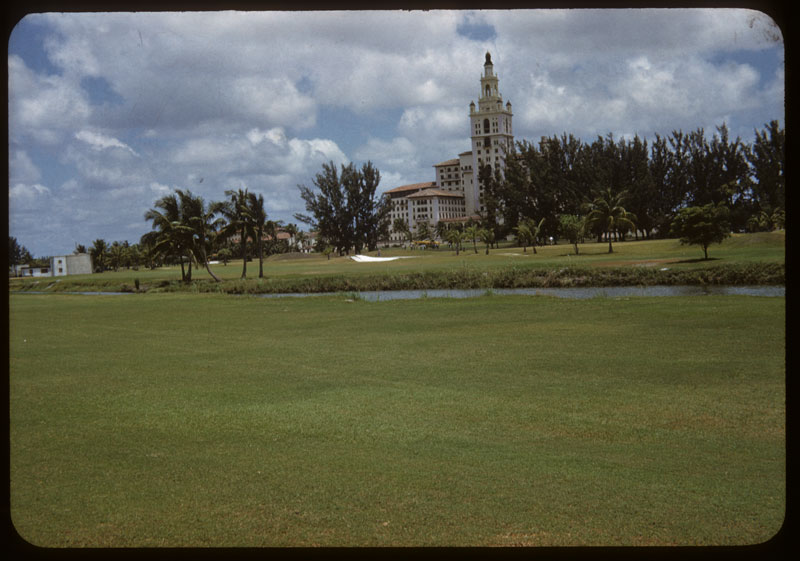 Reseeded bermuda after Sod. Ars. killed St. Aug.