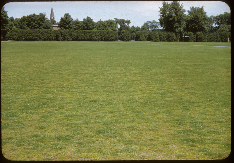 Football Field mostly Bent