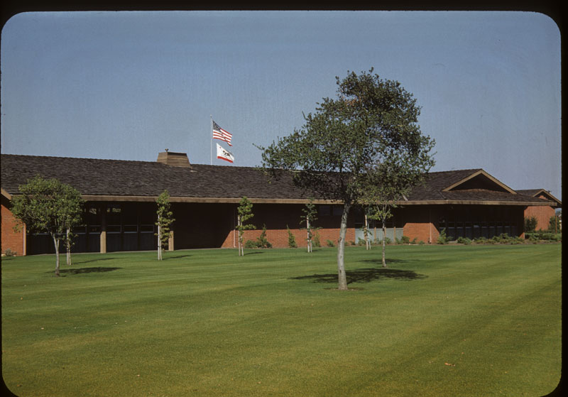 Merion lawn Brown from rust
