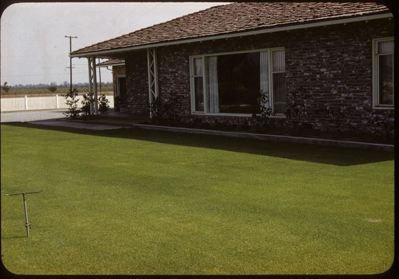 Merion lawn for member