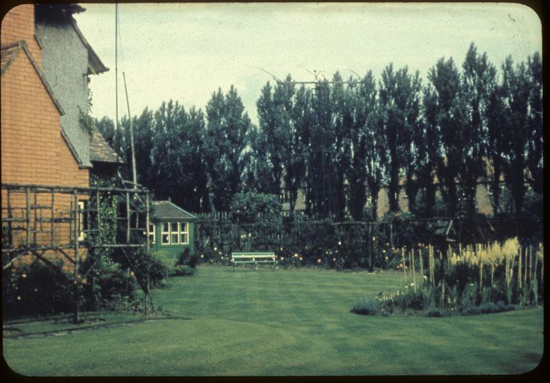 Seedman's lawn