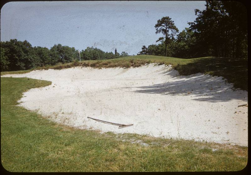 Beach grass trap edging