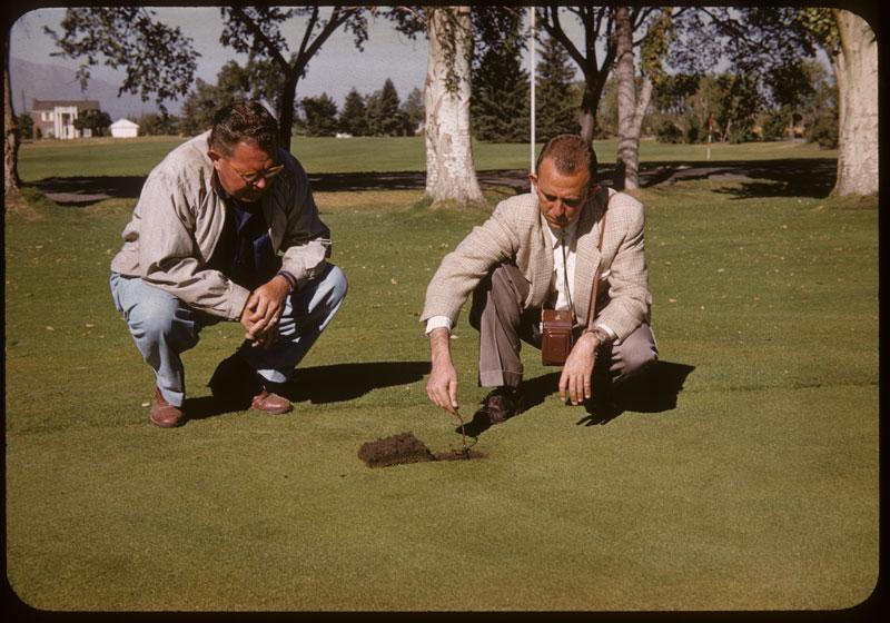 Wilson & Hansen check tree roots in G