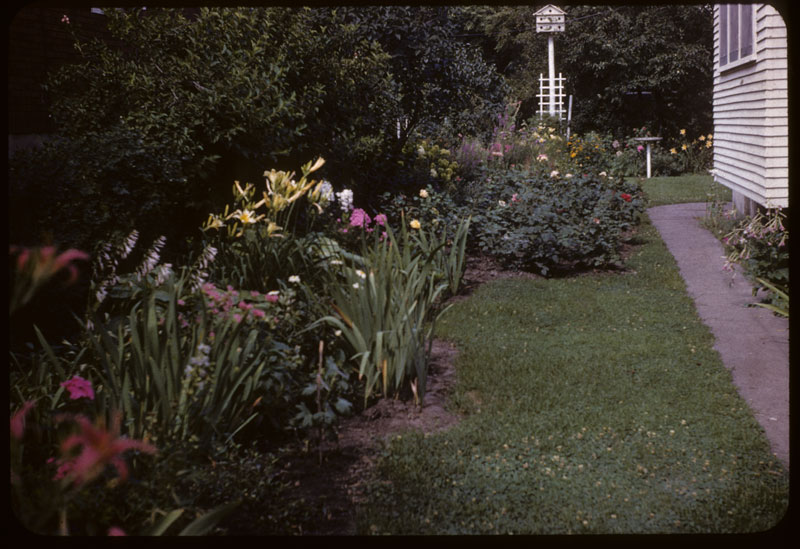 1st Prize lawn & garden Milorg. Fed
