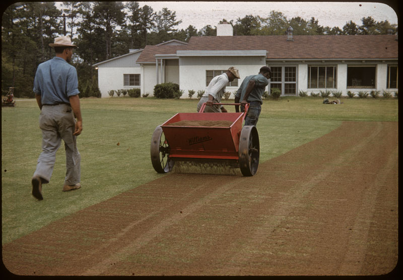 Topdressing after seeding
