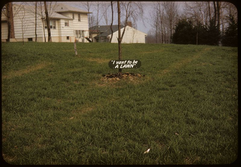 """Sign """"I vant to be a Lawn"""""""