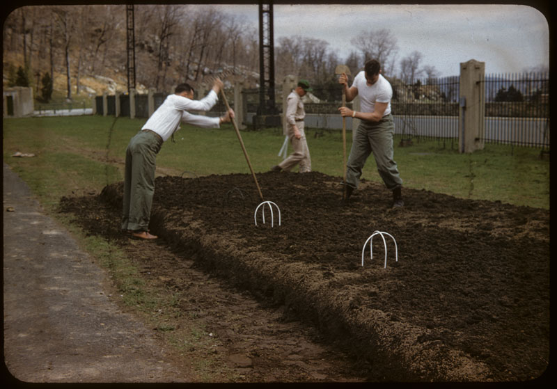 Dowfume preparing topsoil