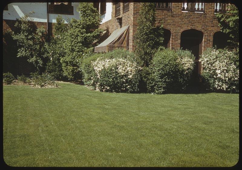 Well-fed lawn